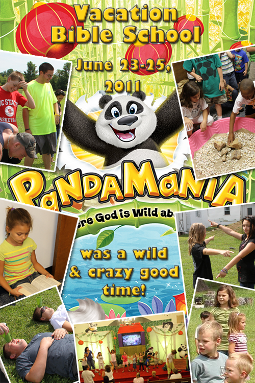 VBS 2011 poster